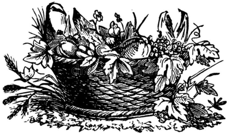 Fruits-006 Free Public Domain Cc0 Image