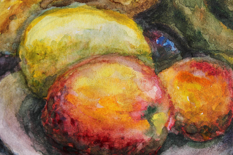 Fruits. Watercolor illustration with orange fruits royalty free illustration