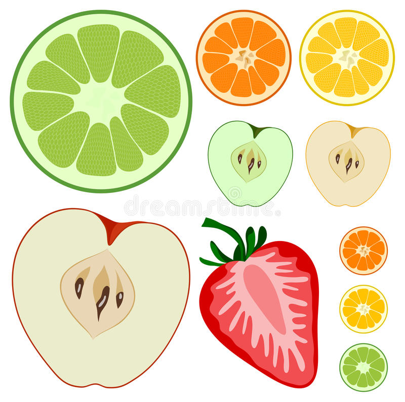 The fruits stock illustration