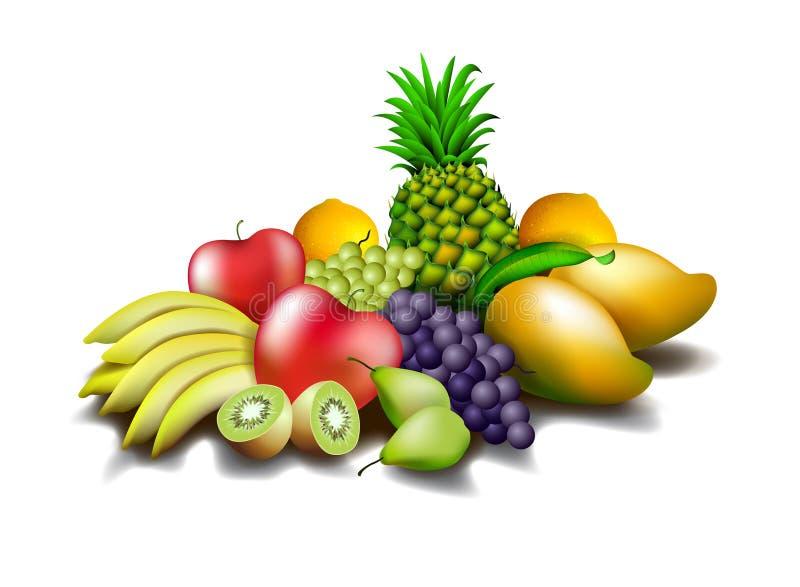 Fruits   illustration de vecteur