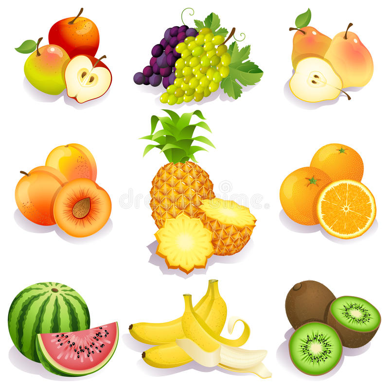 Fruits vector illustration