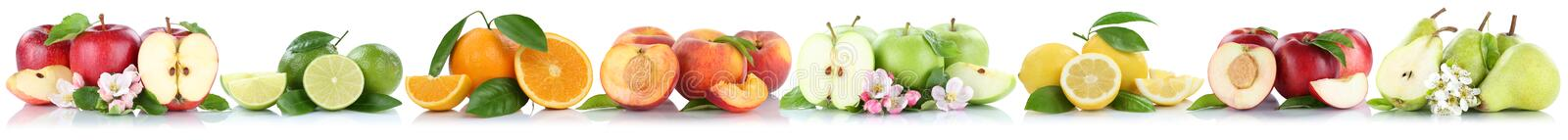 Fruits apple orange lemon nectarine apples oranges fruit in a row isolated on white royalty free stock images