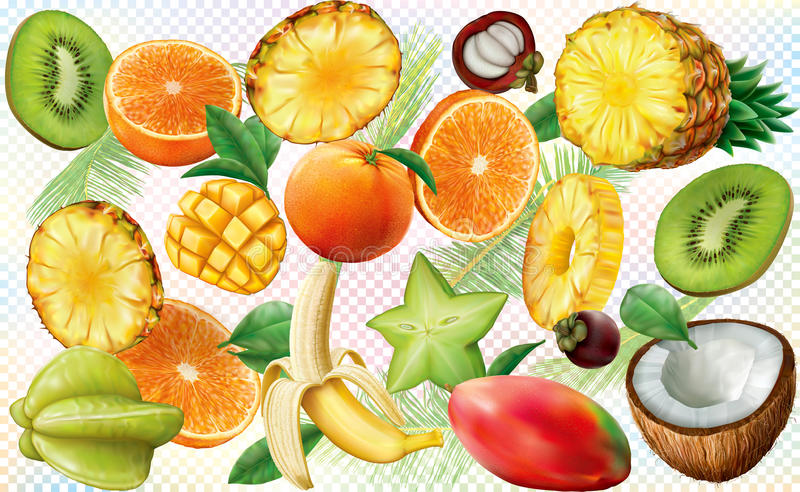 Fruits background. Various slices of tropical fruit on colored semi transparent background. Vector royalty free illustration