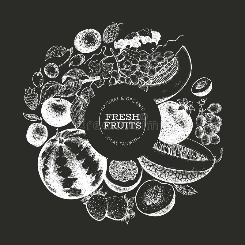 Fruits and berries design template. Hand drawn vector tropic fruits illustration on chalk board. Engraved style fruit. Retro. Fruits and berries design template stock illustration