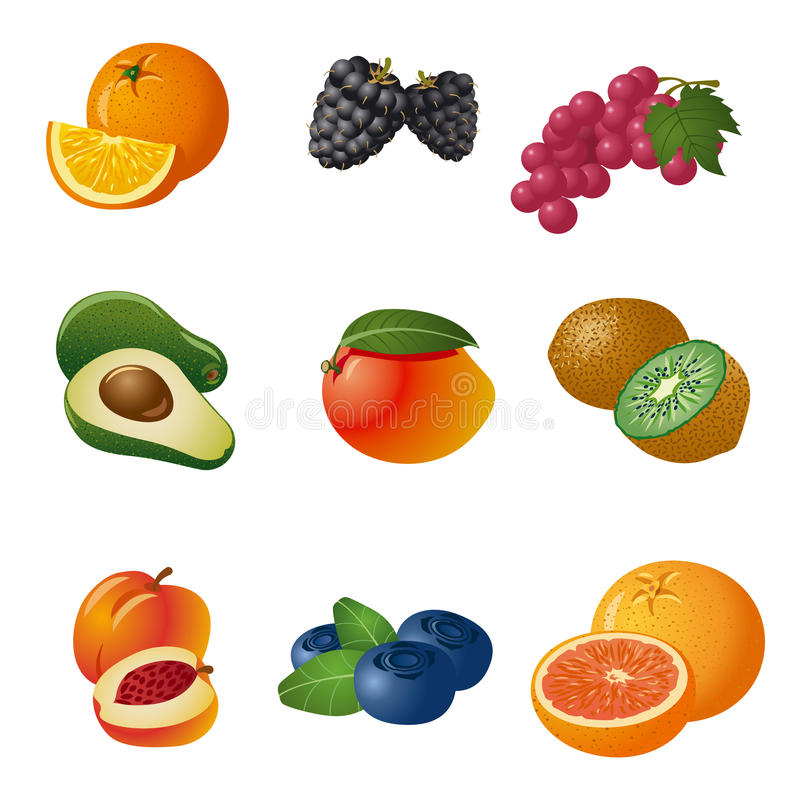 Fruits and berries icon set. Different fruits and berries icon set stock illustration