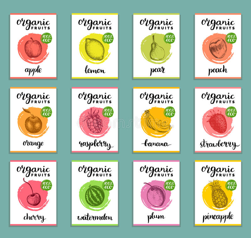 Fruits and berries labels. Hand drawn healthy, organic food and drink cards set. Farm eco products tags collection. royalty free illustration