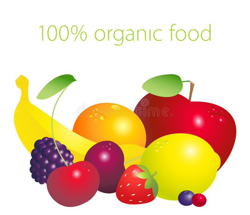 Fruits and berries set with 100 per cent organic lettering isolated on white background. Healthy lifestyle concept. Vector illustration stock illustration