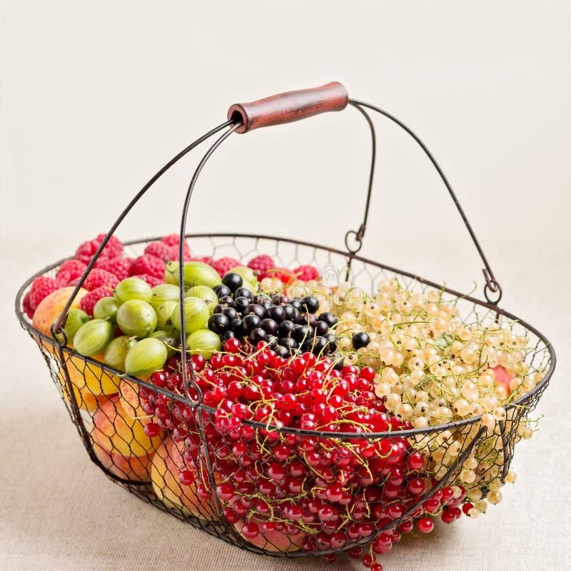Fruits d'été et baies - rouges, groseilles noires et blanches, raspb images stock