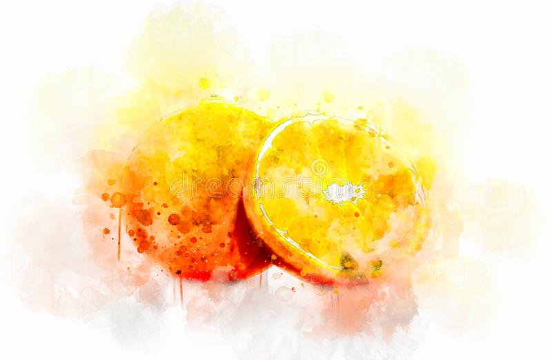 Fruits d'illustration d'aquarelle photos stock