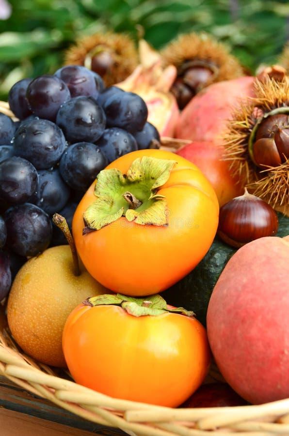 Fruits dans le panier en automne photo stock