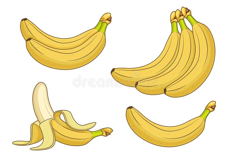 Fruits de banane de bande dessinée Groupes d'illustration fraîche de vecteur de bananes illustration stock