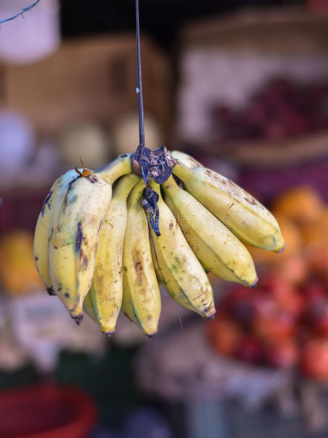 Fruits de banane en vente sur le marché Patuli Floating Market, Calcutta, Inde photos stock