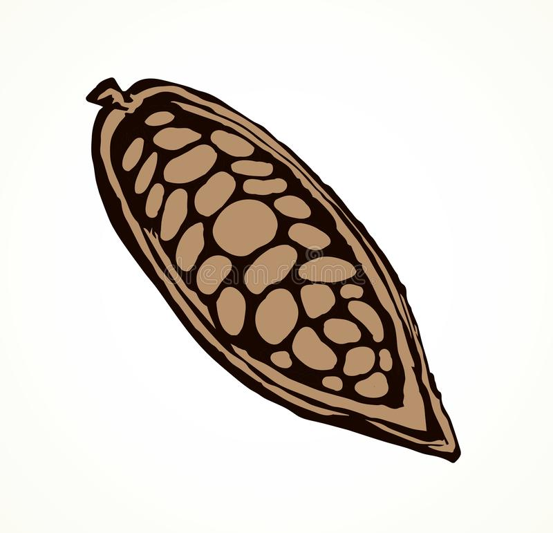 Fruits de cacao Retrait de vecteur illustration de vecteur
