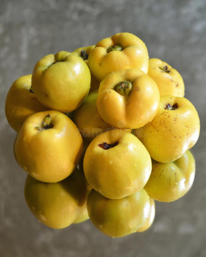 Fruits de coing images stock