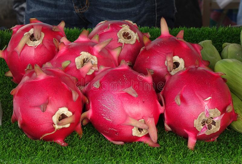 Fruits de dragon colorés image libre de droits