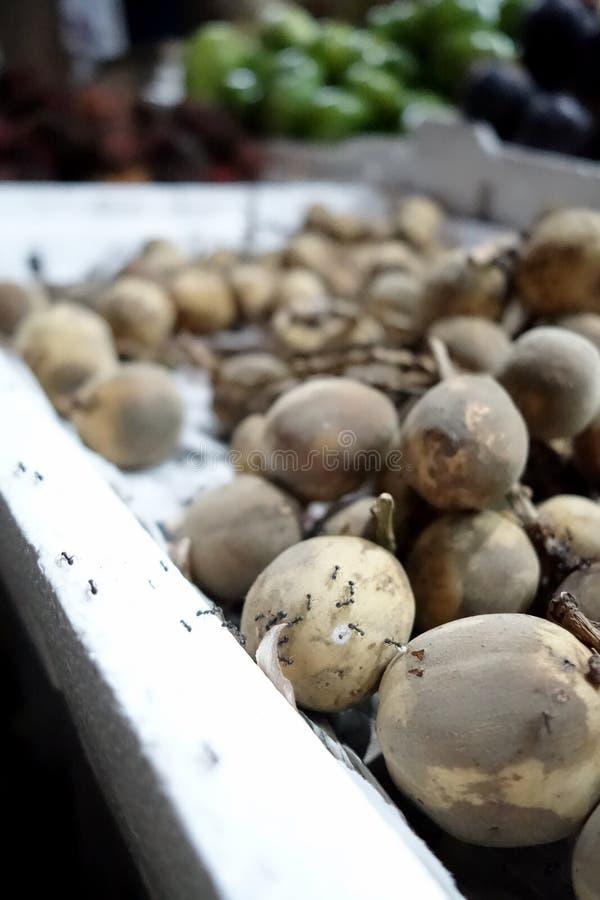 Fruits de Lanzones mangés par des fourmis image libre de droits