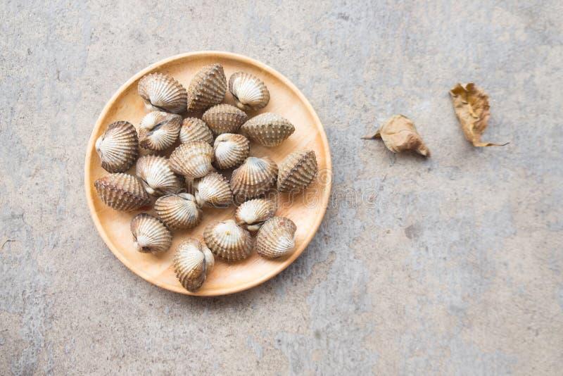 Fruits de mer crus frais de coquille de coque sur le plat en bois photo stock