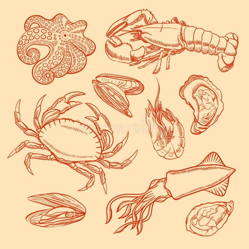 Fruits de mer de croquis illustration libre de droits