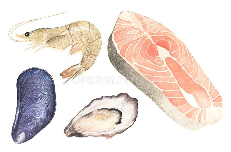 Fruits de mer Ensemble d'huître d'aquarelle, moule, saumon illustration stock