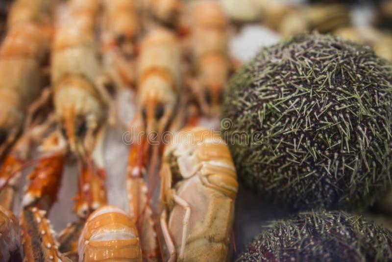 Fruits de mer et ?quipement industriel pour l'industrie de la p?che photo libre de droits