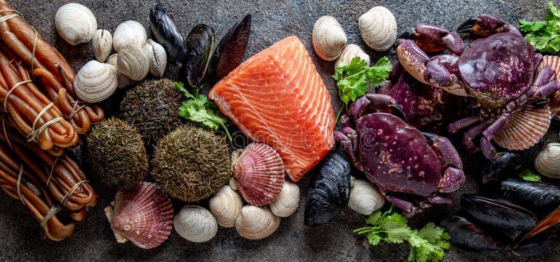 FRUITS DE MER PACIFIQUES Le saumon frais, marche en crabe des moules de palourdes d'ostions, cochayuyo d'algue, oursins Fond de n image stock