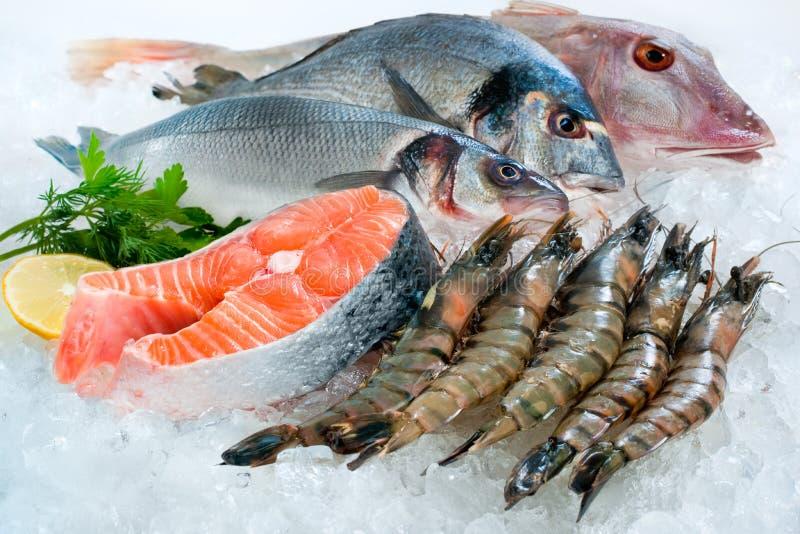 Fruits de mer sur la glace photographie stock libre de droits