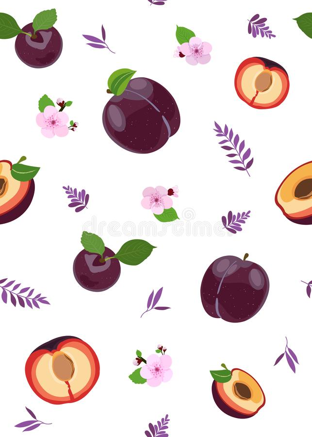 Fruits de prune et modèle sans couture de tranche avec les feuilles mignonnes sur le fond blanc, illustration de vecteur de fruit illustration libre de droits
