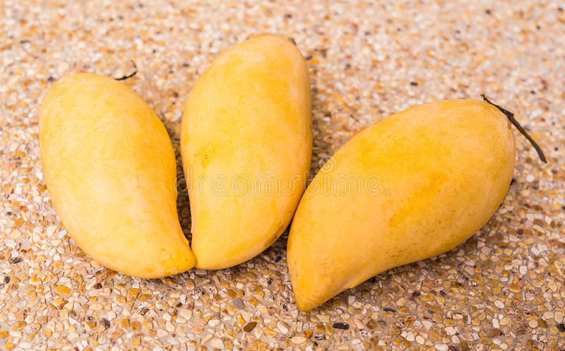 Fruits, diet and healthy food concept - close up of mango royalty free stock photography