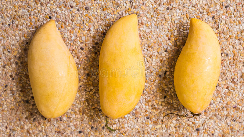 Fruits, diet and healthy food concept - close up of mango royalty free stock images