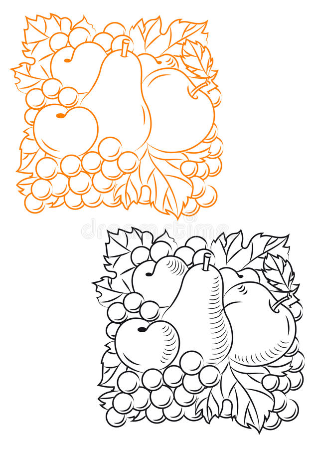 Fruits embellishment. Set of fruits in retro style for embellishment design royalty free illustration