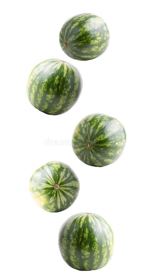 Fruits entiers en baisse de pastèque d'isolement sur le blanc photos libres de droits