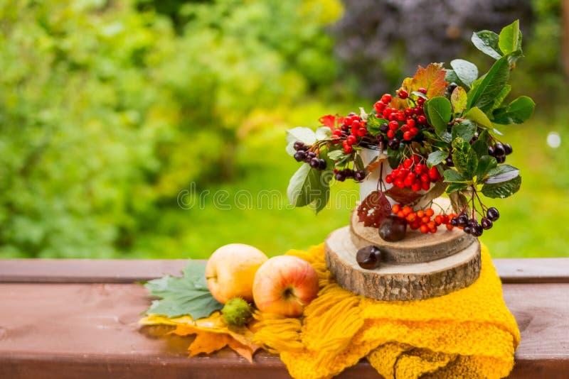 Fruits et écrous, écharpe jaune sur la table en bois extérieure, automne confortable la vie toujours avec des pommes, baies de so photos libres de droits