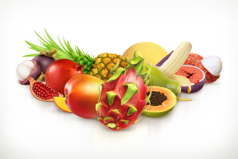 Fruits et baies juteux illustration libre de droits