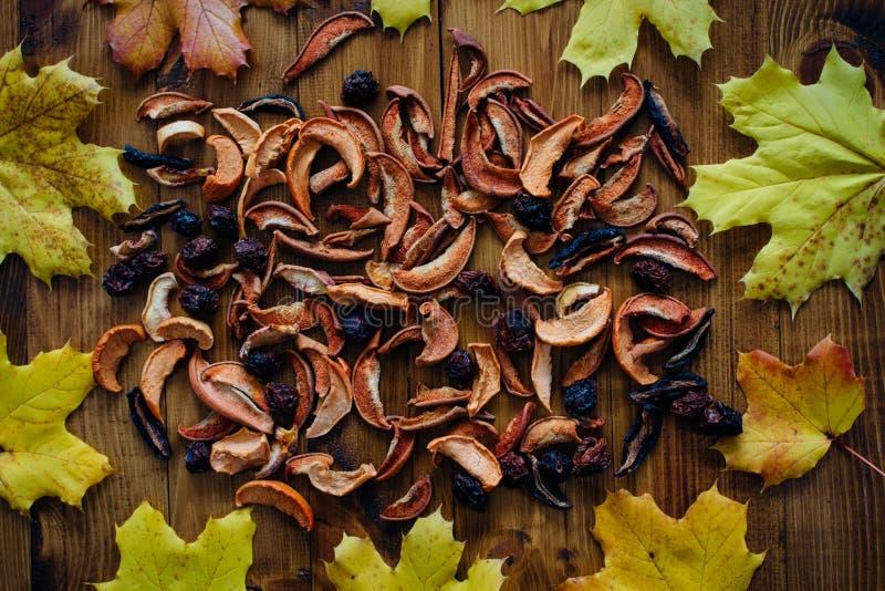 Fruits et feuilles d'automne secs images libres de droits