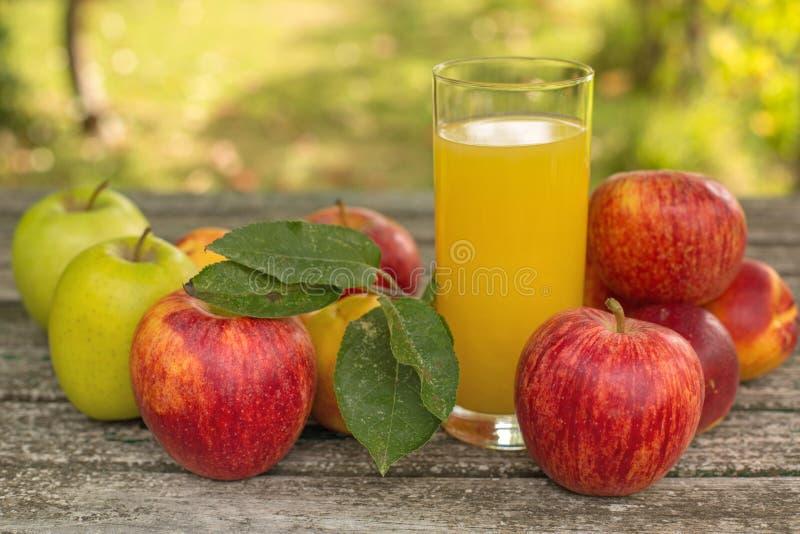 Fruits et jus photographie stock libre de droits