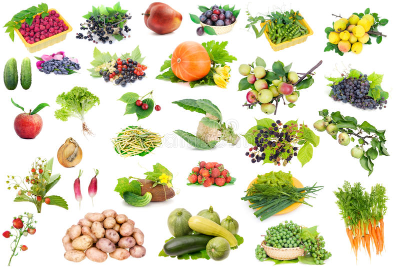 Fruits et légumes réglés image stock