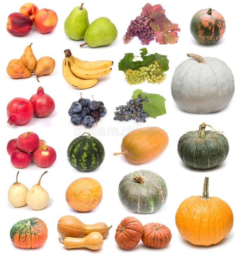 Fruits et potirons photo stock