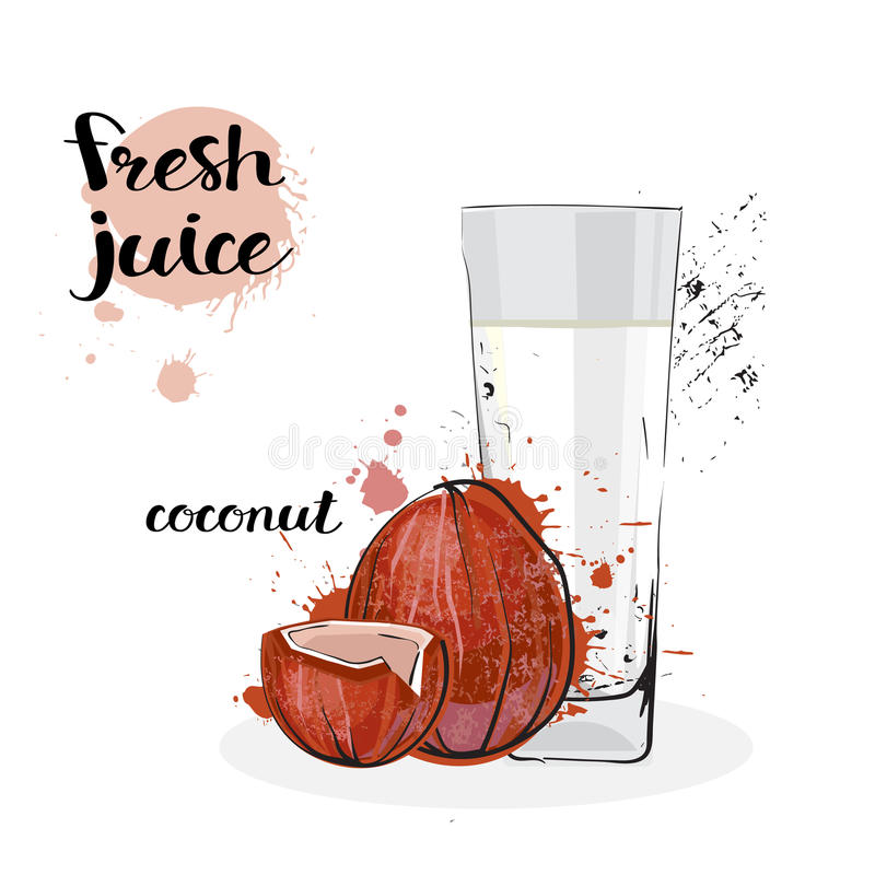 Fruits et verre de Juice Fresh Hand Drawn Watercolor de noix de coco sur le fond blanc illustration libre de droits