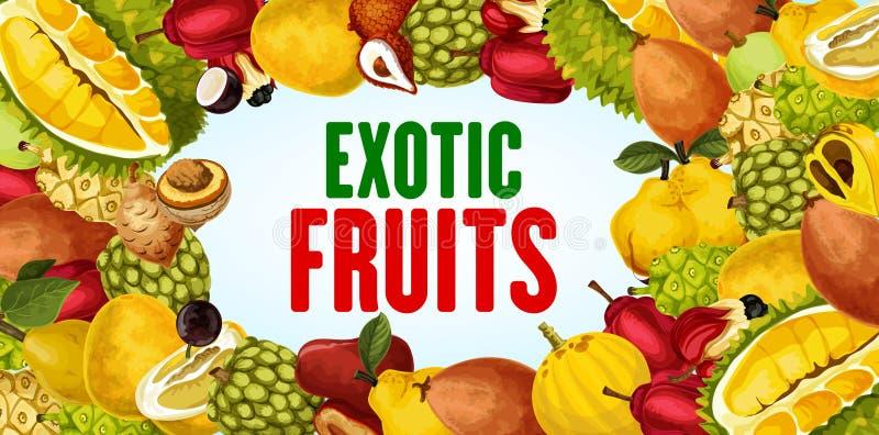 Fruits exotiques et bannière tropicale de cadre de baie illustration de vecteur