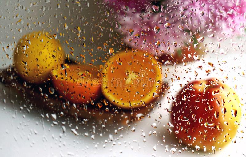 Fruits and flowers stock images