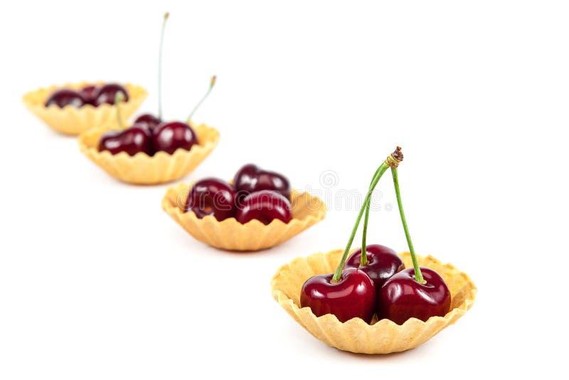 Fruits frais d'une merise photos libres de droits