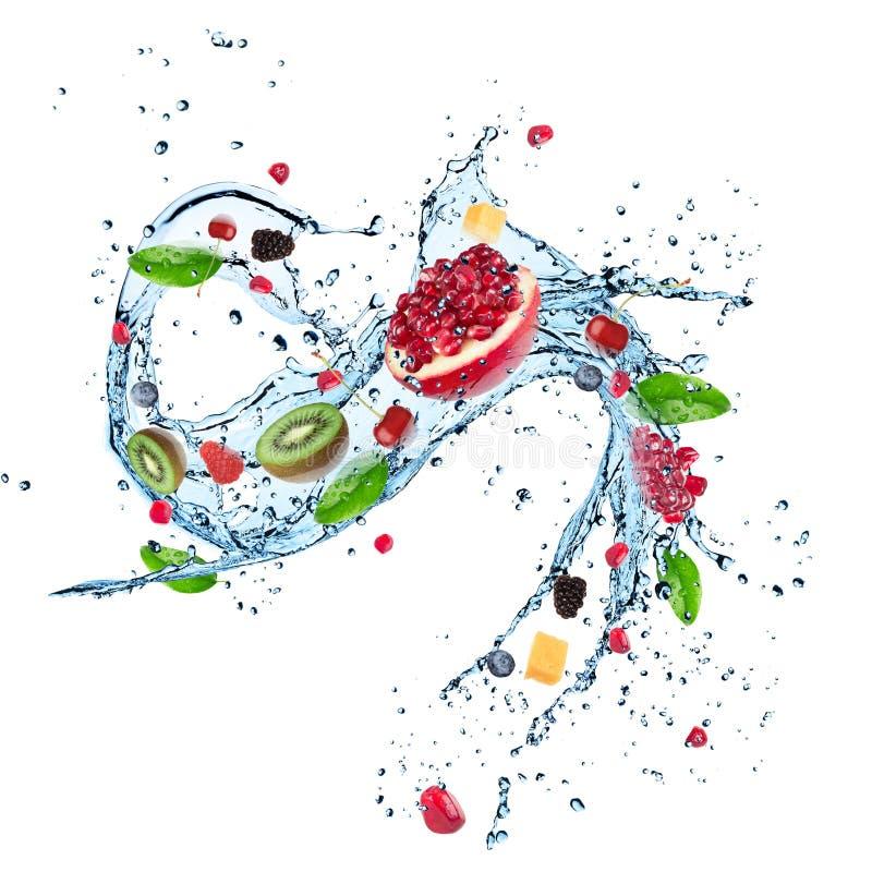 Fruits frais dans l'éclaboussure de l'eau illustration stock