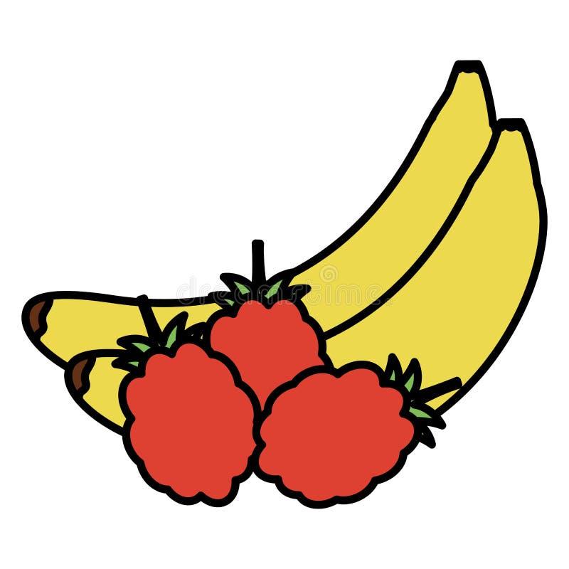 Fruits frais de banane et de mûre illustration libre de droits