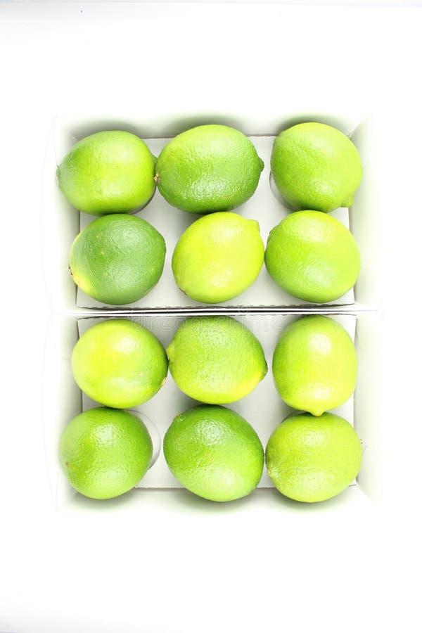 Fruits frais de chaux dans des boîtes photo stock