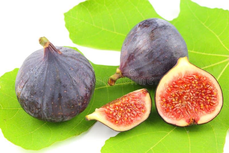 Fruits frais de figue sur une feuille de figue photo libre de droits