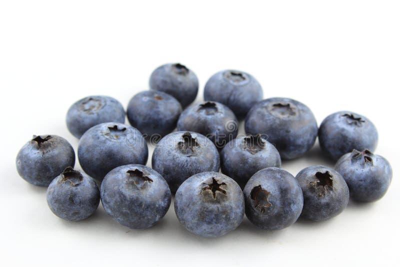 Fruits frais de myrtille d'isolement sur un fond blanc image libre de droits