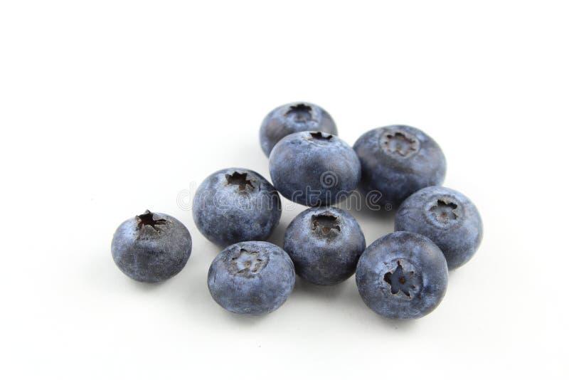 Fruits frais de myrtille d'isolement sur un fond blanc photographie stock