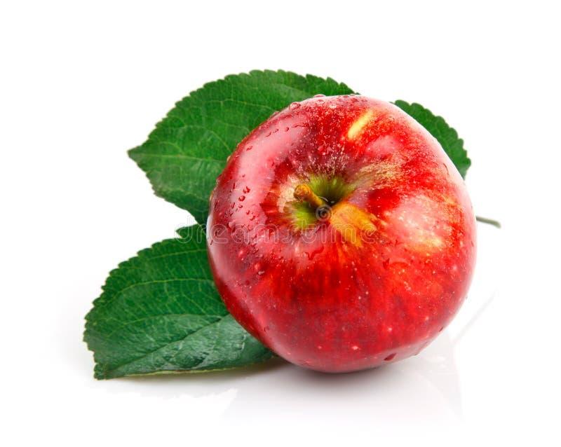 Fruits frais de pomme avec les lames vertes image libre de droits