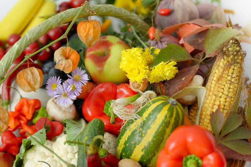 Fruits frais et légumes photographie stock libre de droits