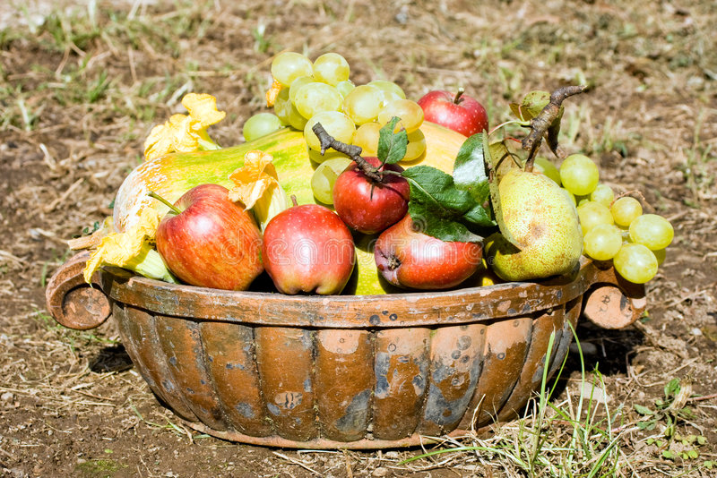 Fruits Harvest Royalty Free Stock Image